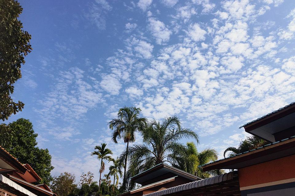 2020年2月 タイ チェンライ 桜リーゾートの青空|AOZORAフォトギャラリー